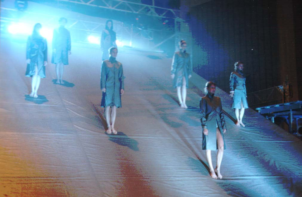Ceny Akademie populární hudby 2001